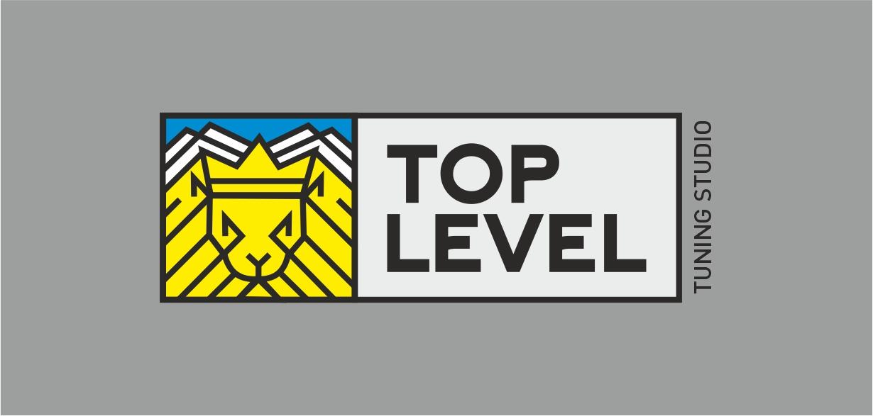 Разработка логотипа для тюнинг ателье фото f_3125f3f2af66c822.jpg