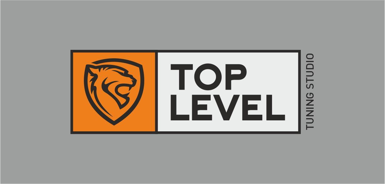 Разработка логотипа для тюнинг ателье фото f_4435f3f35d0ac265.jpg