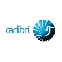 CarLibri