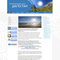 """Сайт туристского бизнес-центра """"Дагестан"""""""