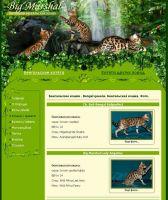 Питомник бенгальских кошек Big Marshal