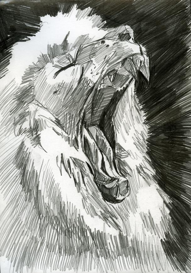 Зверски голодный белый лев
