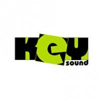 """Мобильное приложение """"Key Sound"""" - мобильное радио с возможностью подбора музыки по трендам"""