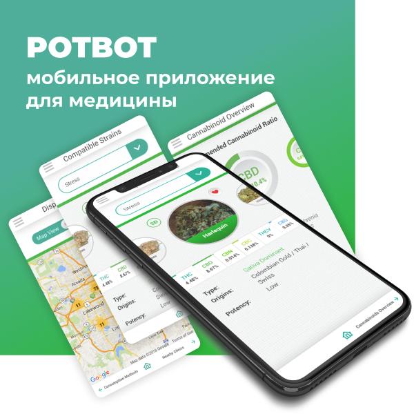 """Мобильное приложение для медицины """"POTBOT"""""""