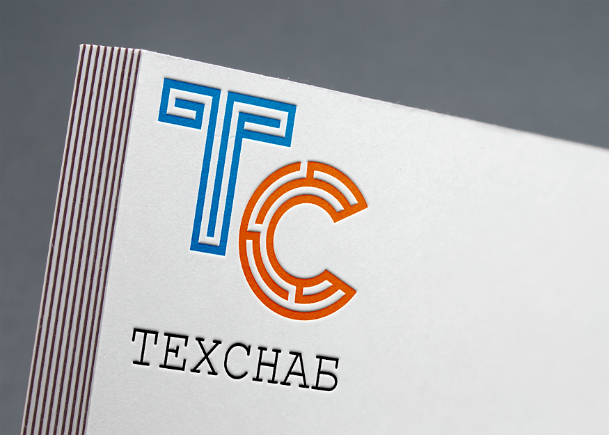 Разработка логотипа и фирм. стиля компании  ТЕХСНАБ фото f_4725b1fb0b75340a.png