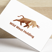 Wild West Holding