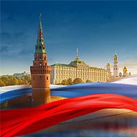 Сет баннеров - MFS (Московская фабрика сеток)