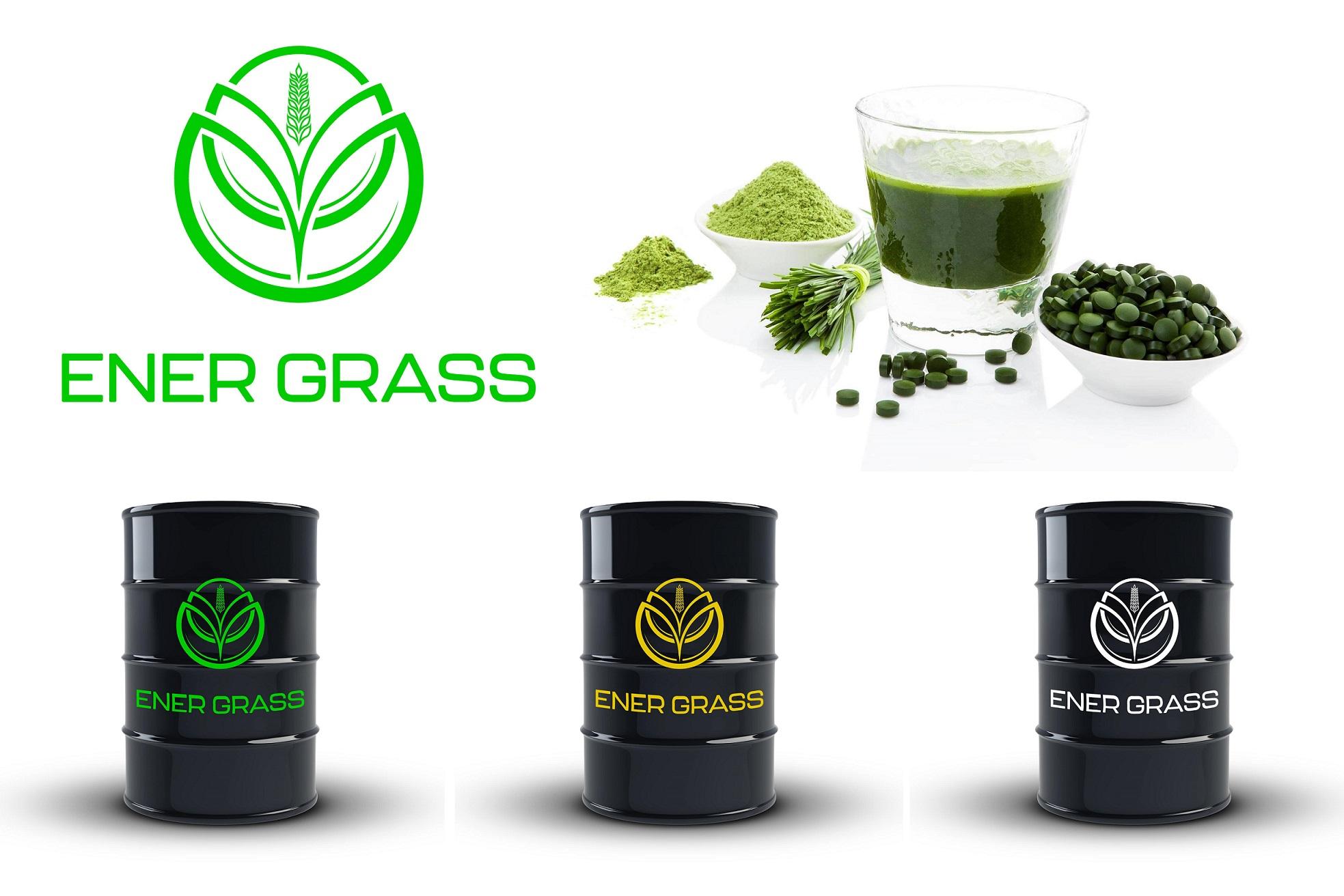 Графический дизайнер для создания логотипа Energrass. фото f_1305f86fe12765df.jpg