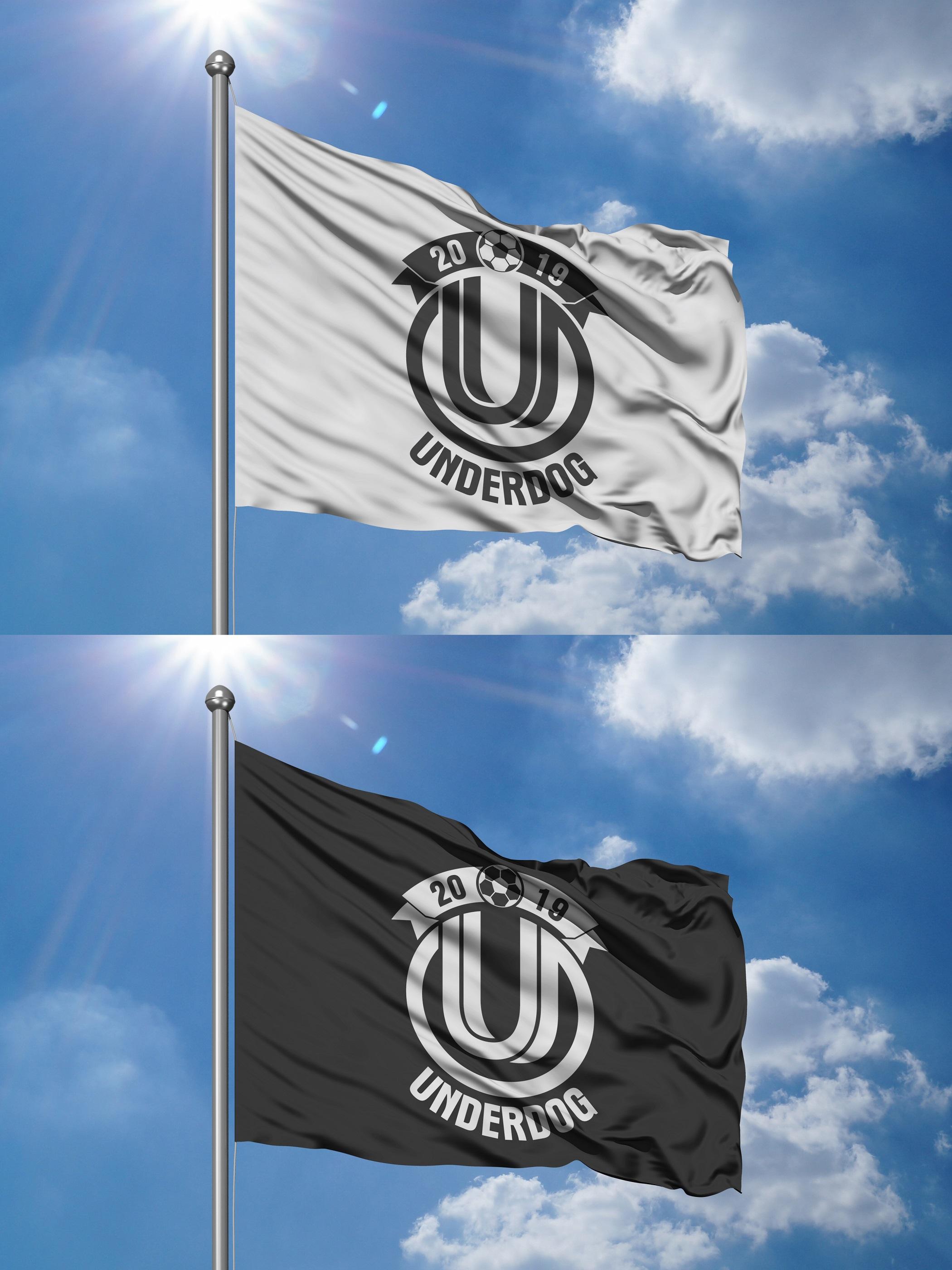 Футбольный клуб UNDERDOG - разработать фирстиль и бренд-бук фото f_1805cb05f1a5d29d.jpg