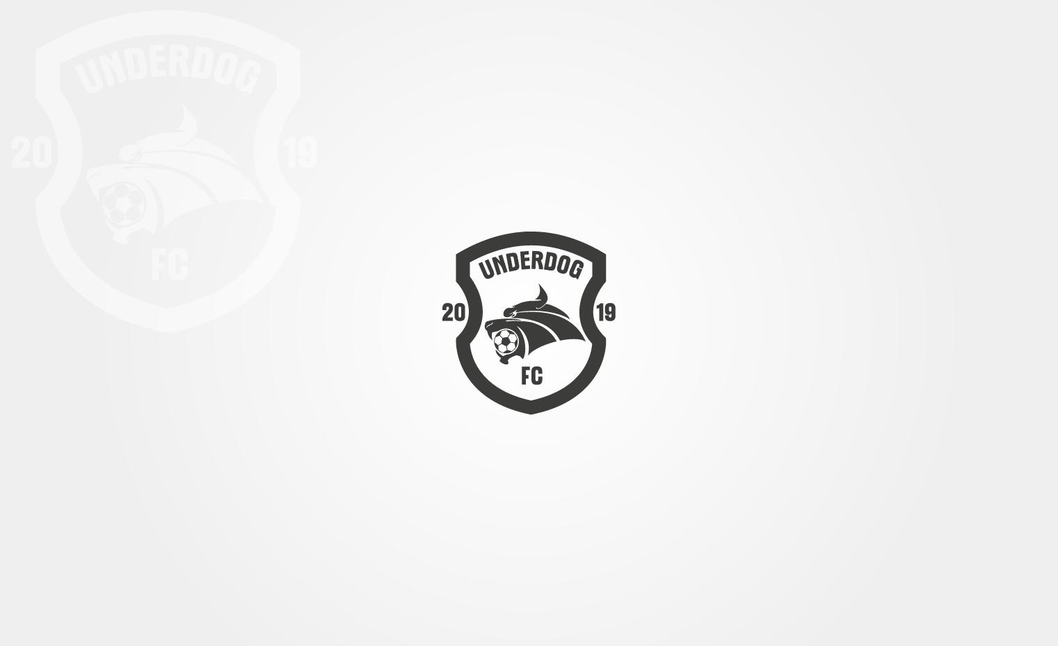 Футбольный клуб UNDERDOG - разработать фирстиль и бренд-бук фото f_3755cb0ac922e36e.png