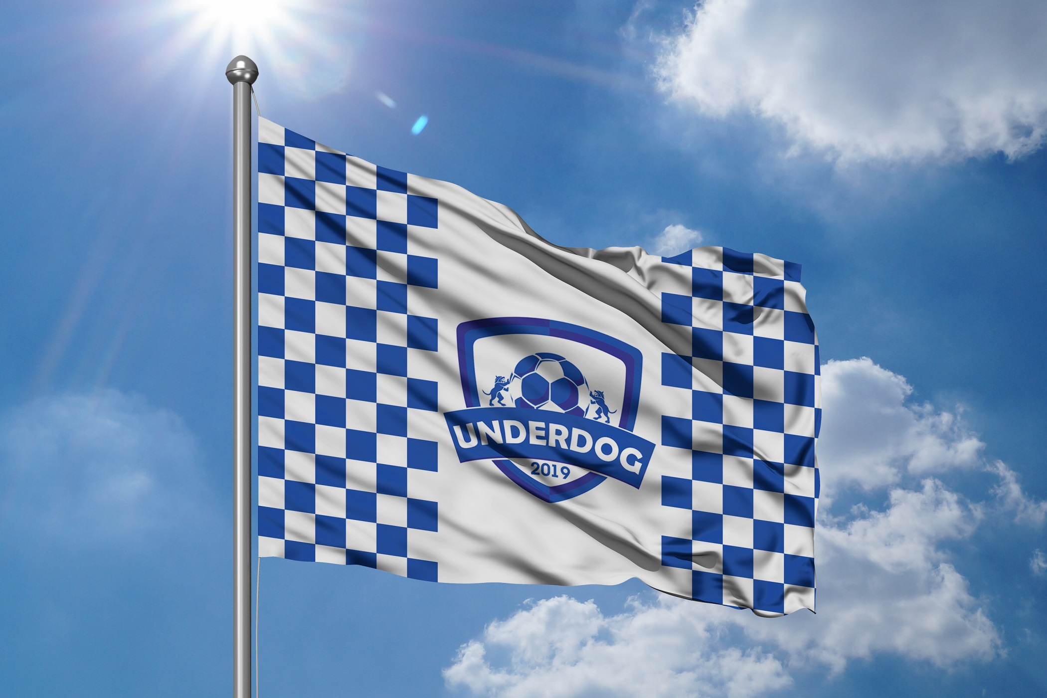 Футбольный клуб UNDERDOG - разработать фирстиль и бренд-бук фото f_4895cb220c51a8d0.jpg