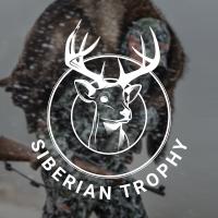 Разработка сайта для компании по организации охоты в местах дикой природы
