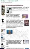 Британские кошки: плюш&бархат