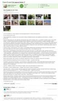 """Отзыв об отеле """"Club Lagonya Garden"""" (Анталия, Белек, Турция — личный опыт)"""