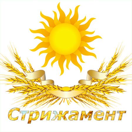 Дизайн лого бренда фото f_0965d4fd77931f7e.jpg