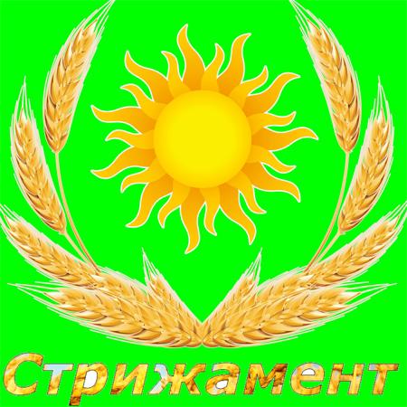 Дизайн лого бренда фото f_3115d4fd77e46337.jpg