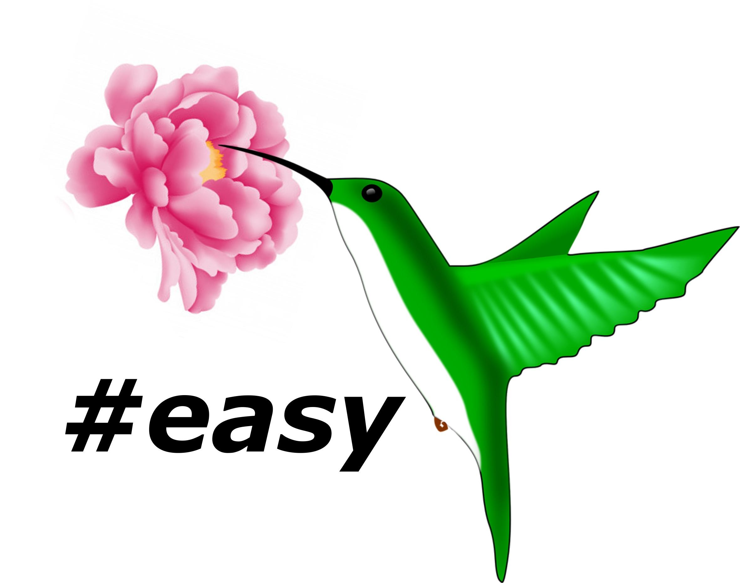 Разработка логотипа в виде хэштега #easy с зеленой колибри  фото f_6265d4eaf3cef166.jpg