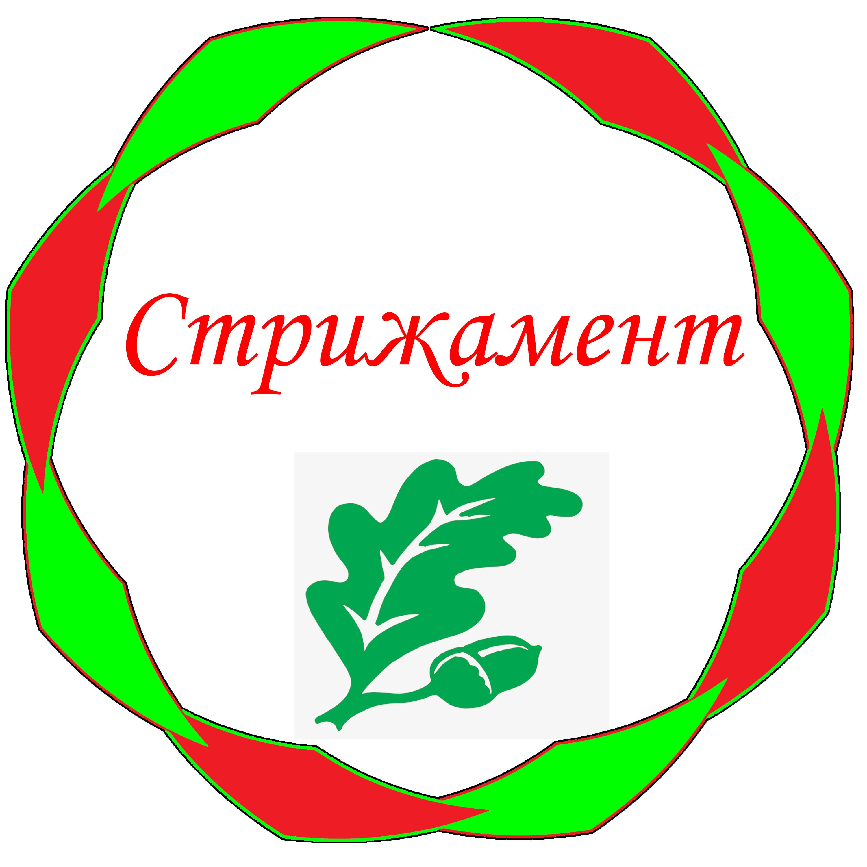 Дизайн лого бренда фото f_6355d4fd5d29f214.jpg