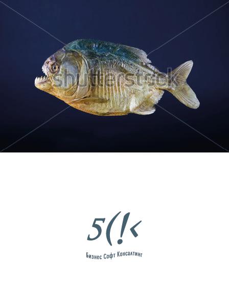 Разработать логотип со смыслом для компании-разработчика ПО фото f_5046795cc6629.png
