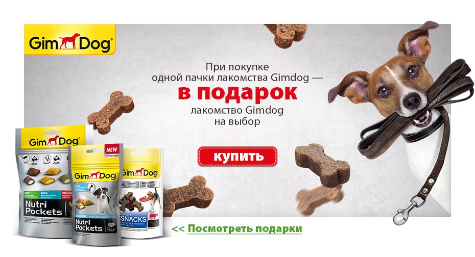 Акционная страница и баннер Лакомства для собак
