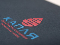 1-е место Логотип Капля