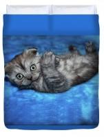 постельное бельё - котёнок
