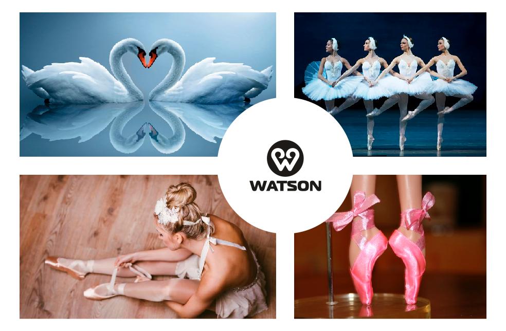 Разработать логотип для балетного бренда фото f_3585bc0a04e4d581.png