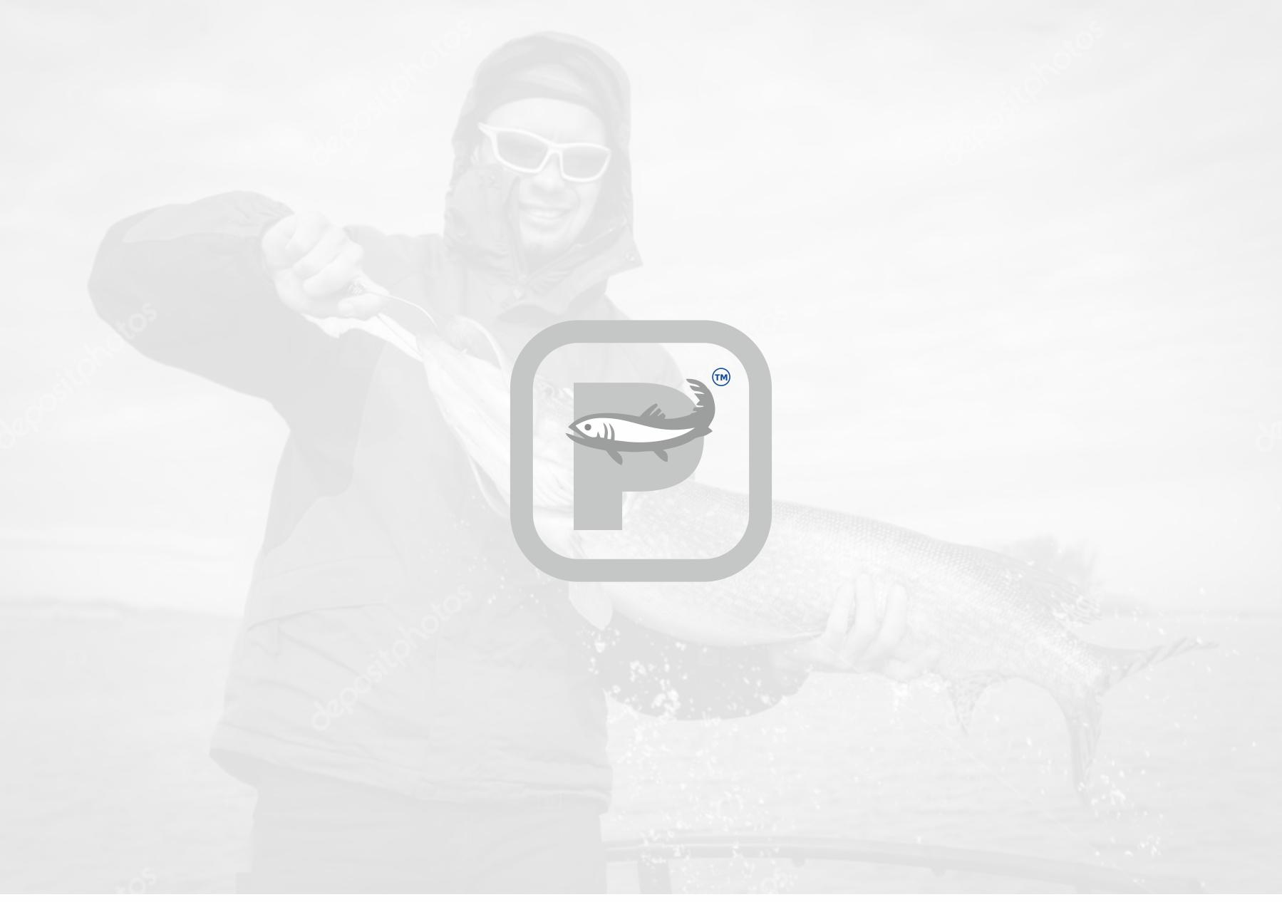 Создание логотипа и брэндбука для компании РЫБКОМ фото f_2345c124b5d7eaa0.png