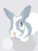 rabbit & ear