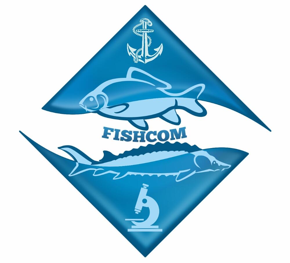 Создание логотипа и брэндбука для компании РЫБКОМ фото f_7205c0a992d21329.jpg