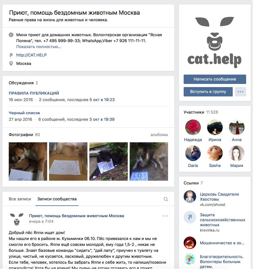 логотип для сайта и группы вк - cat.help фото f_21459daa173478be.jpg
