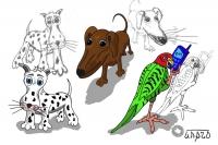 Зверушки с нуля: две собаки и попугай