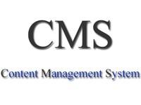Разработка индивидуальной cms по тз заказчика