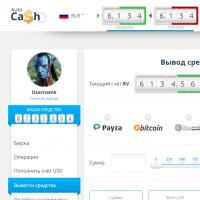 """Вёрстка личного кабинета пользователя проекта """"AutoCash"""""""