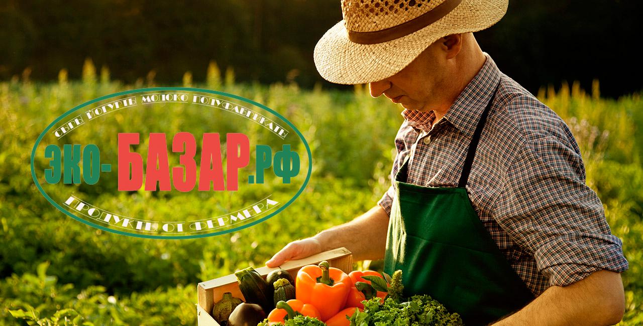 Логотип компании натуральных (фермерских) продуктов фото f_037593eb274409f7.png