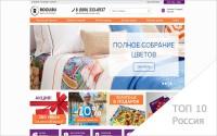 Продвижение интернет-магазина rocu.ru