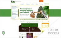 Продвижение сайта elkimall.ru в Москве