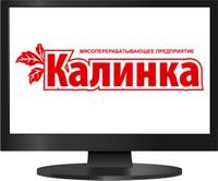 Продвижение сайта в Челябинской области клиента компании Калинка