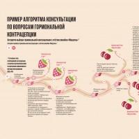 Инфографика для SP