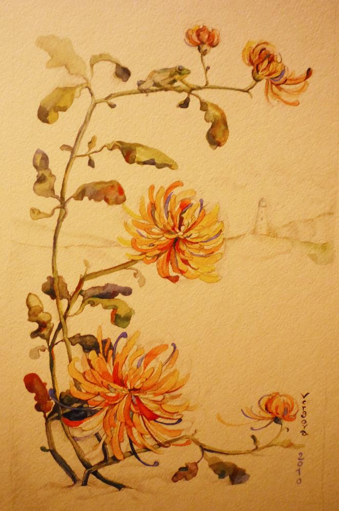 Хризантемы и лягушка