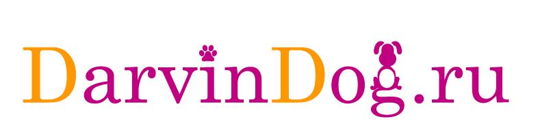 Создать логотип для интернет магазина одежды для собак фото f_081564b40ad5023e.png