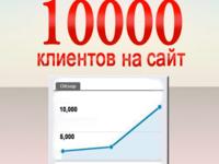 Продвижение сайта , трафик ( скайп консультация)