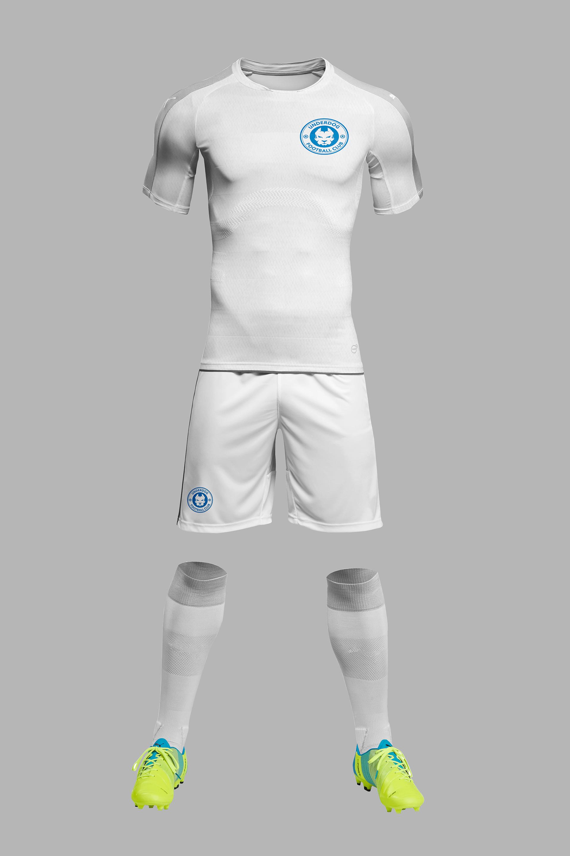 Футбольный клуб UNDERDOG - разработать фирстиль и бренд-бук фото f_1445caf8d3949f57.png