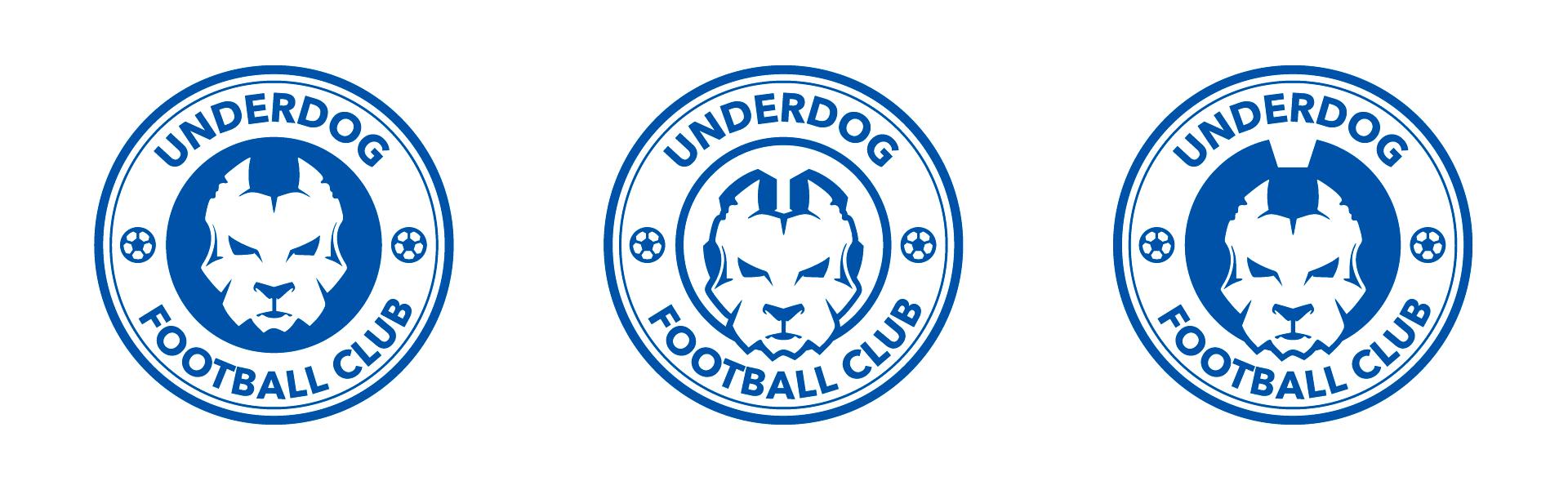 Футбольный клуб UNDERDOG - разработать фирстиль и бренд-бук фото f_1935caf8d342cdd4.png