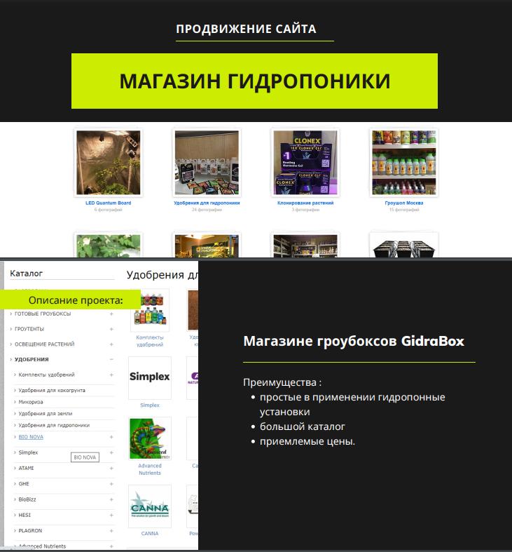 Продвижение сайта gidrabox.ru