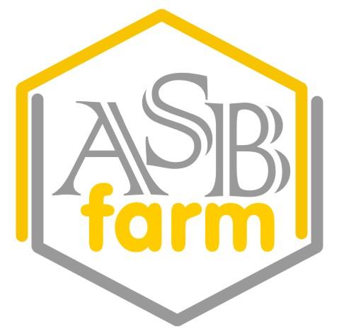 Разработка 3-4 видов логотипа фото f_0075a5cfe10e5718.jpg