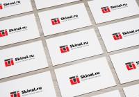 Разработка логотипа для компании Skinal