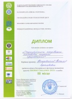 "Диплом за победу в конкурсе ""Sikorsky Challenge 2013"""