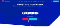 Shinycoins (веб-страница для криптовалюты, продажа и тд) Php.wordpress.admin custom php