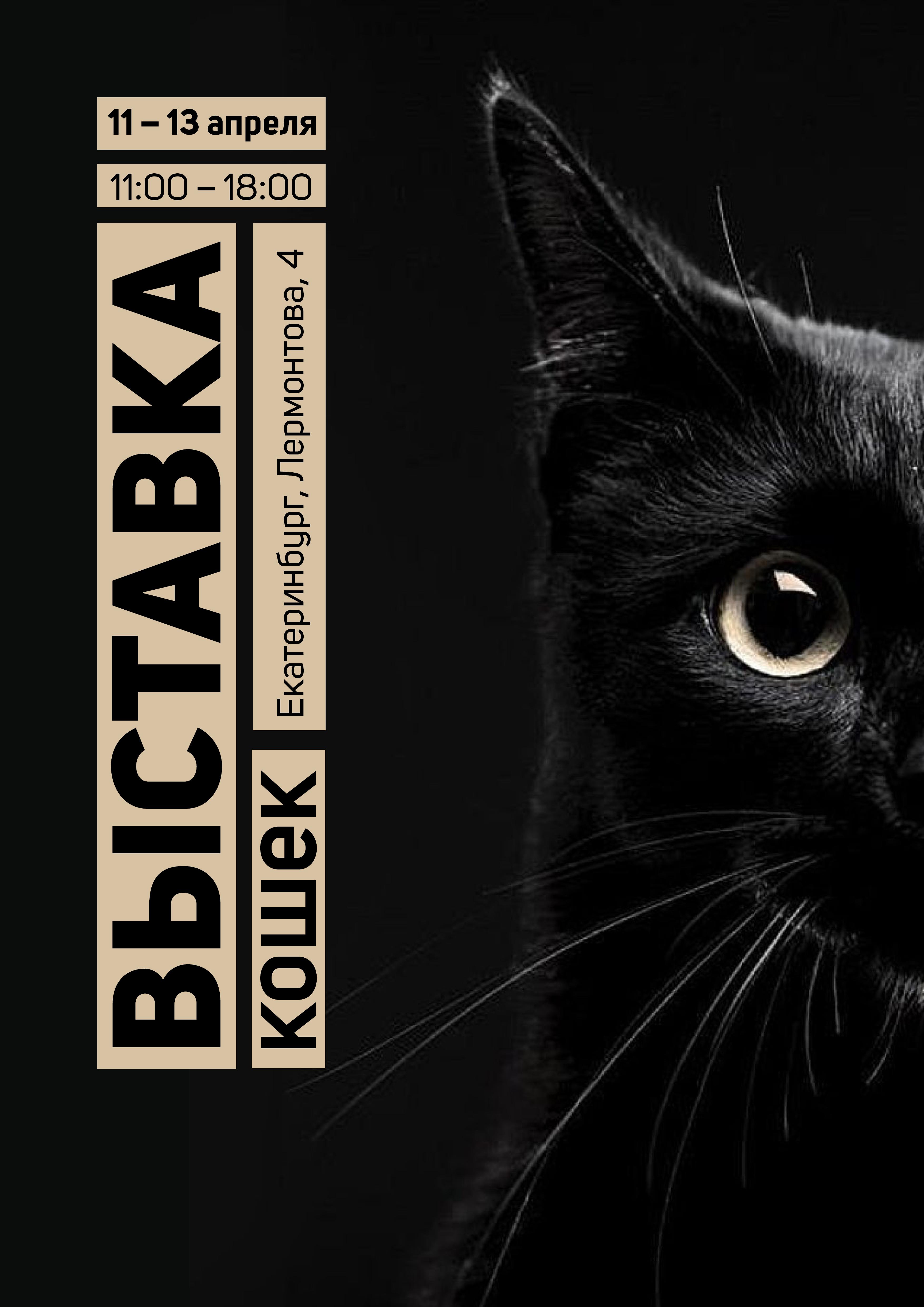 Выставка кошек. Екатеринбург. Дизайн и верстка плаката.
